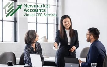 Virtual CFO Guide